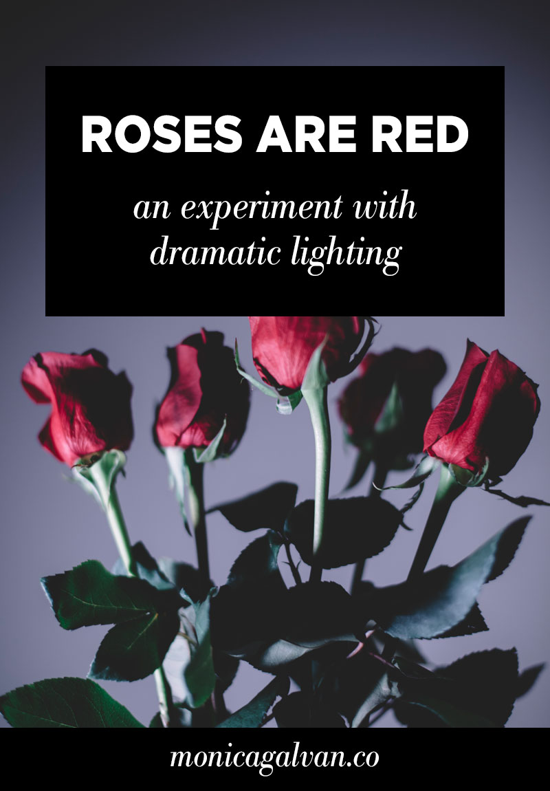 Roses are Red: An Experiment in Dramatic Lighting (Part 1)