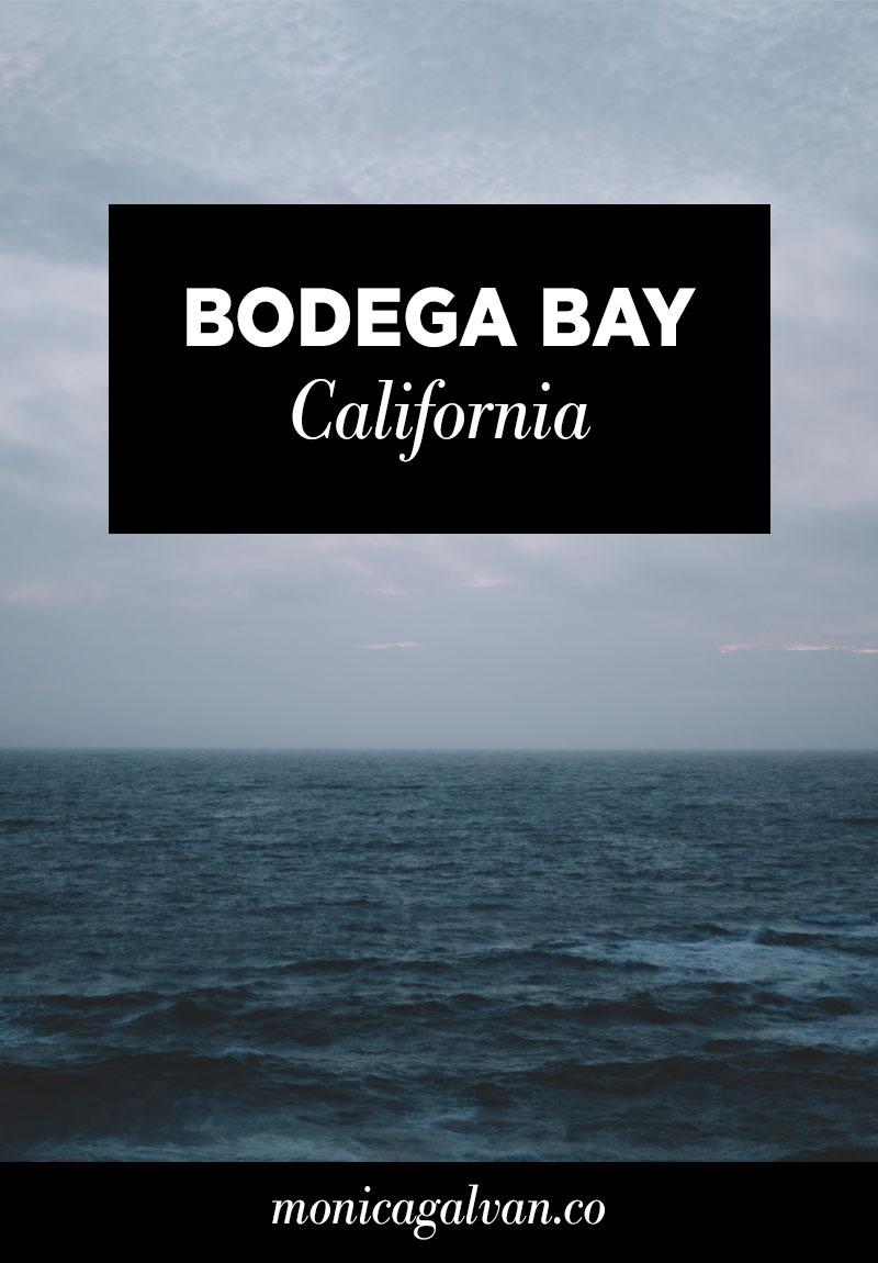 Bodega Bay California photography by Monica Galvan