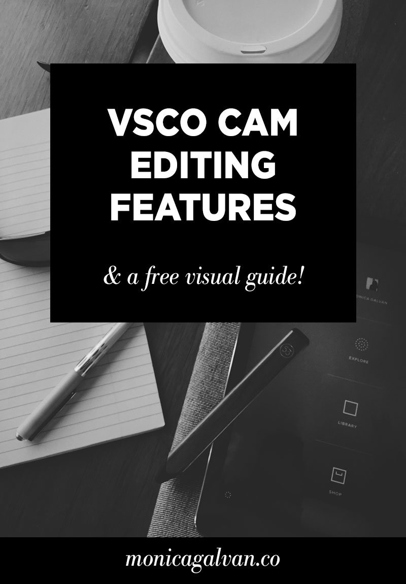 Guide to VSCO Cam editing features — Monica Galvan