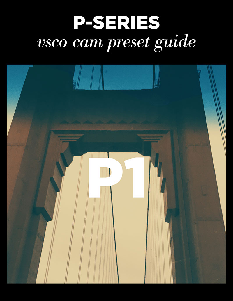 Monica-Galvan_VSCO-Cam-P-Series-Guide_01.jpg