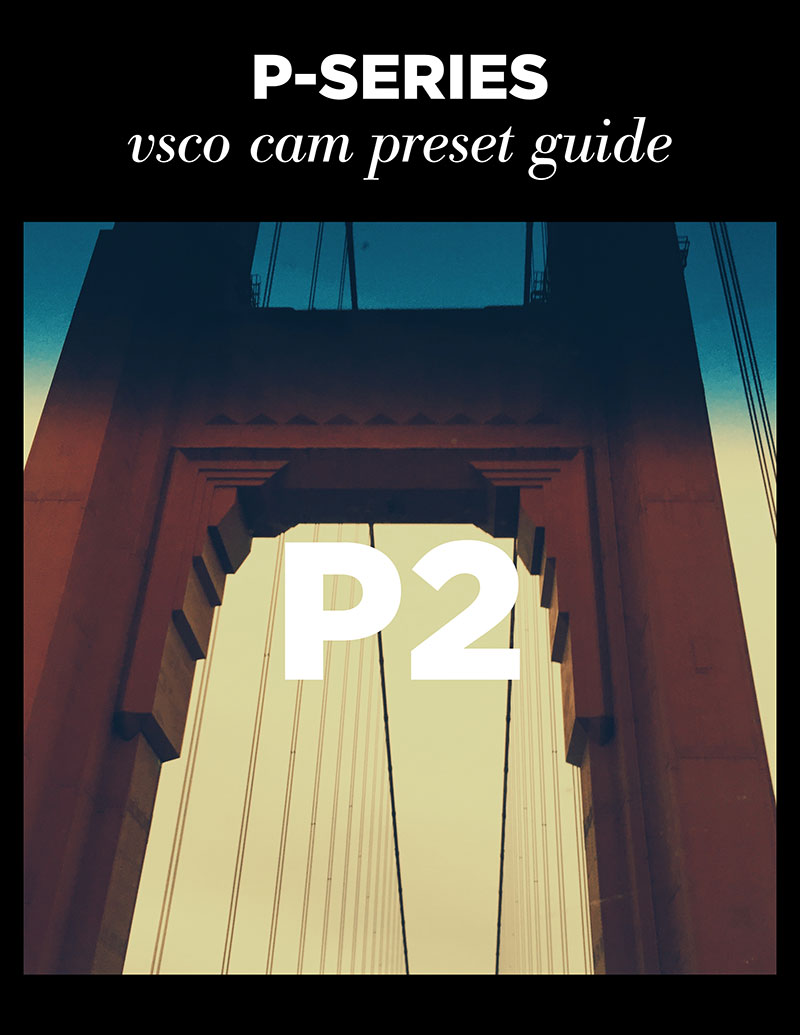Monica-Galvan_VSCO-Cam-P-Series-Guide_02.jpg