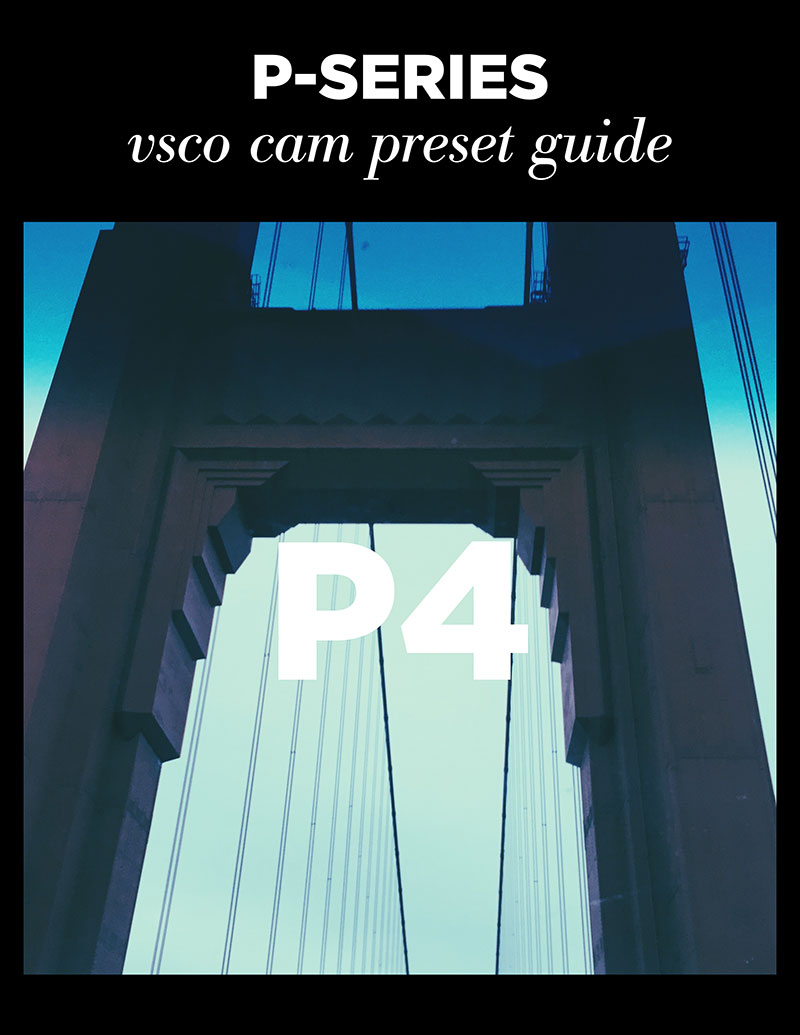 Monica-Galvan_VSCO-Cam-P-Series-Guide_04.jpg