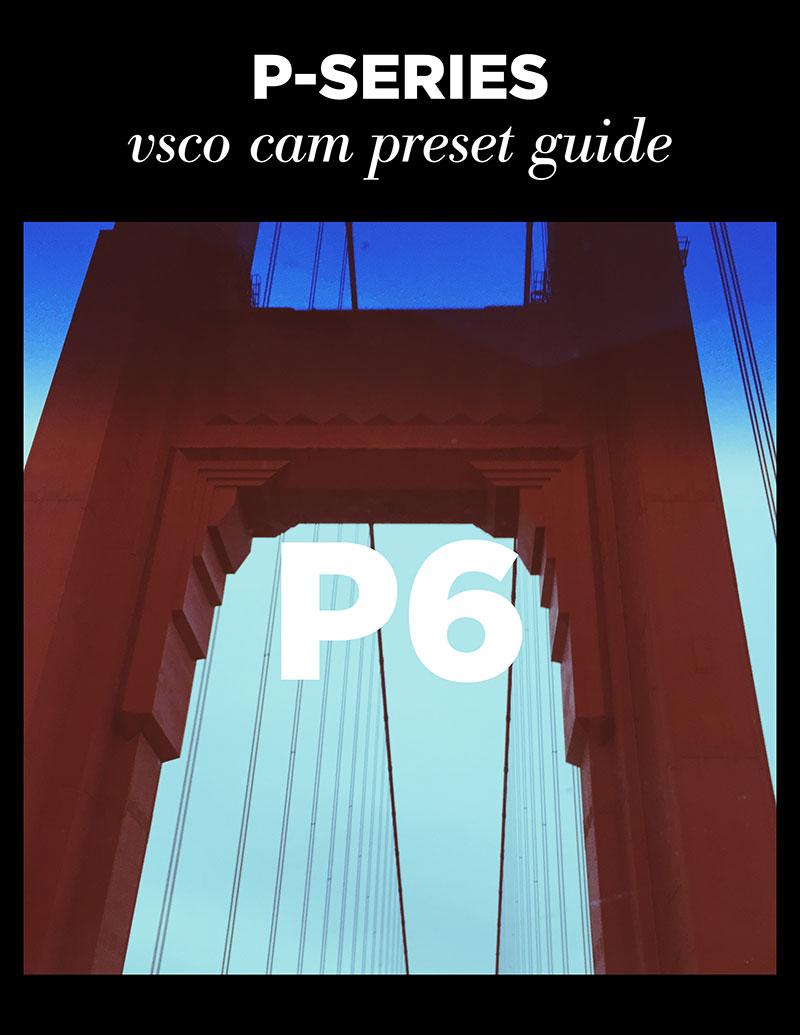 Monica-Galvan_VSCO-Cam-P-Series-Guide_06.jpg