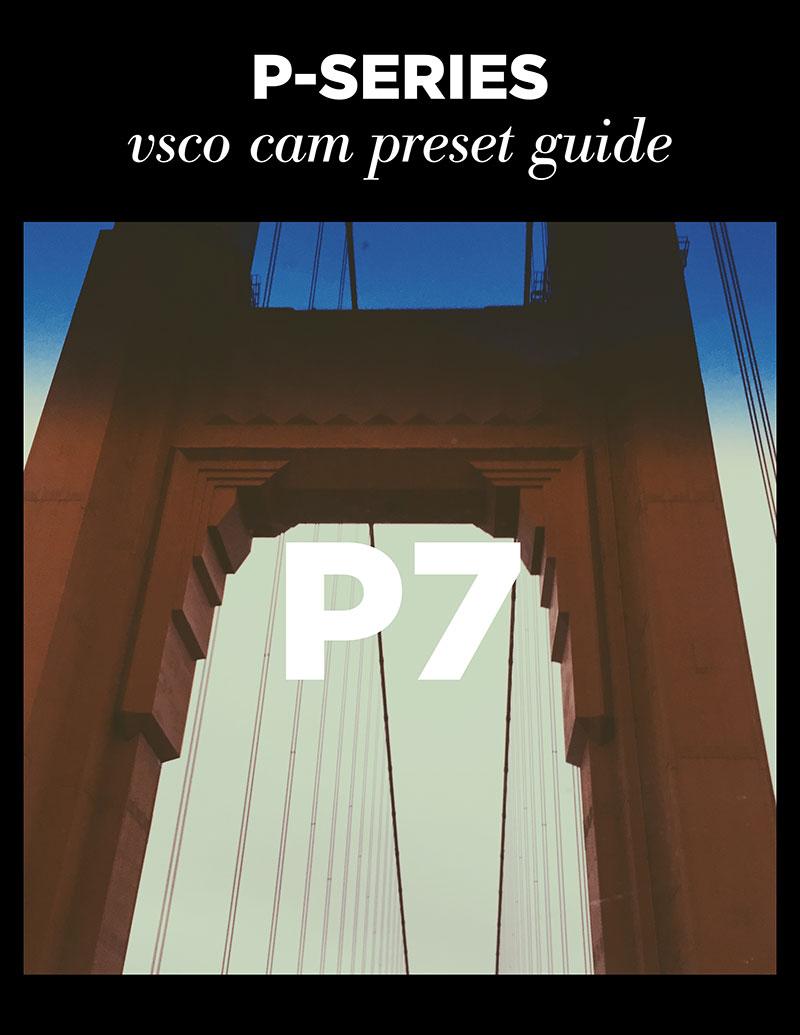 Monica-Galvan_VSCO-Cam-P-Series-Guide_07.jpg