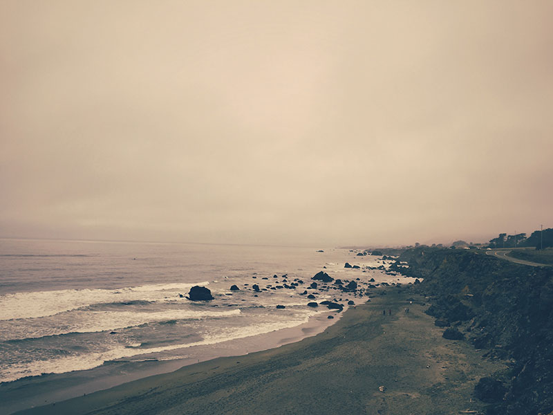 Beach Views: Bodega Bay, California