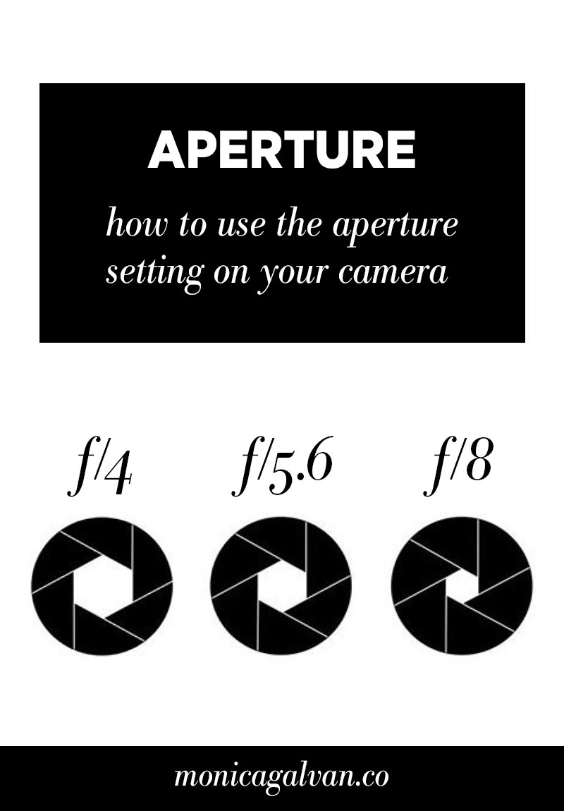 Monica-Galvan_Aperture_How-to-use-aperture-camera-setting.jpg