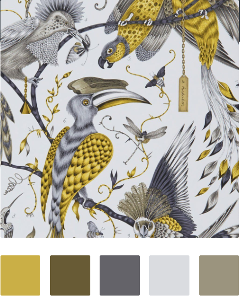 Create a colour palette… - That will enhance your living space.