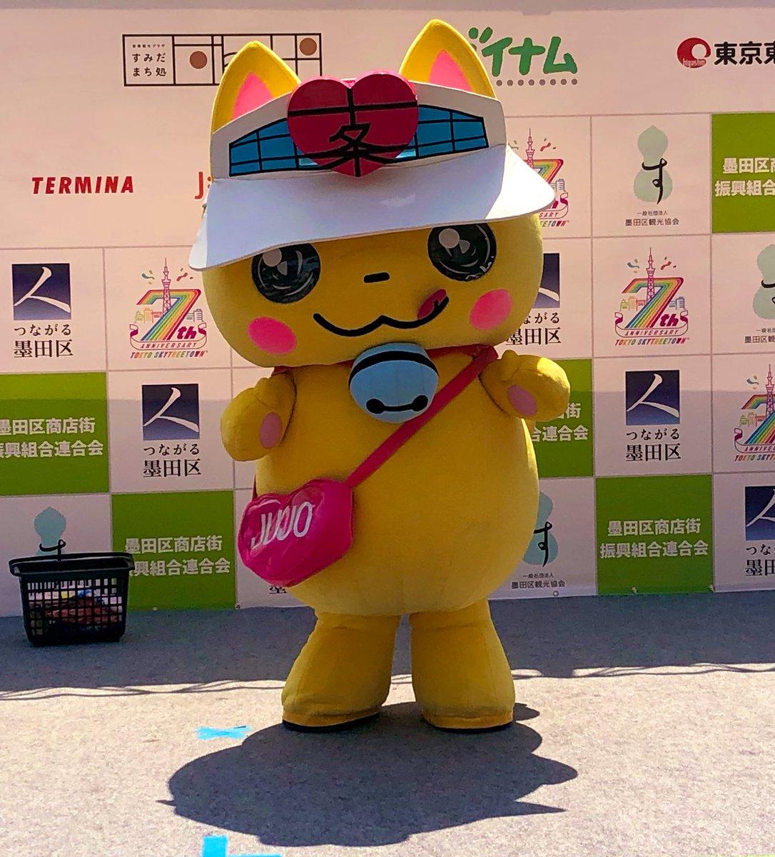 Kitanyan - Ele é o gatinho fashionista mascote de uma rua coberta de compras