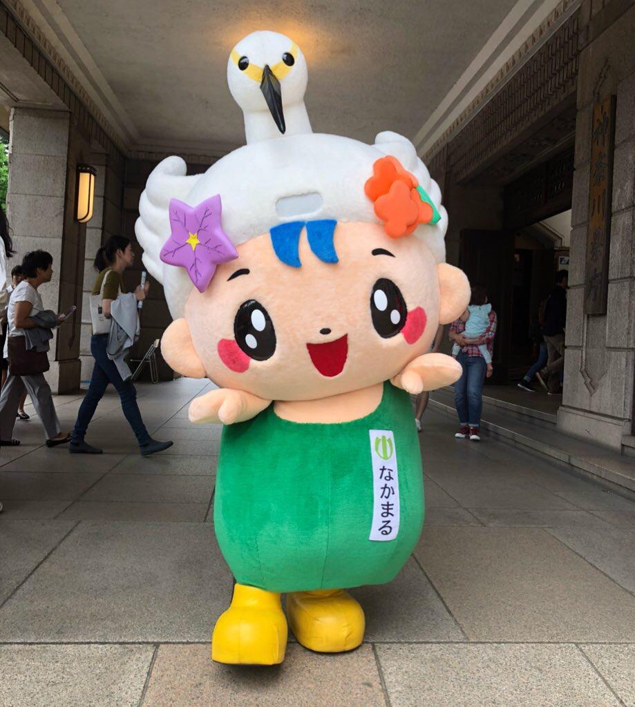Nakamaru - De Nakai. Para mim é como se um mascote japonês se montasse de drag! Acho lindo!