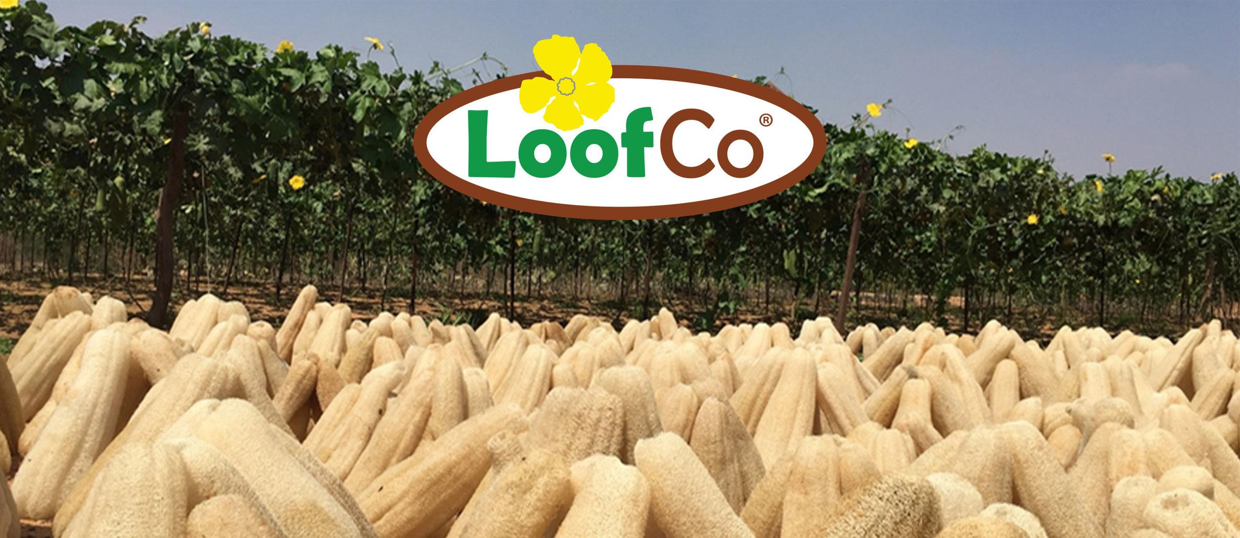 Loofco.jpg