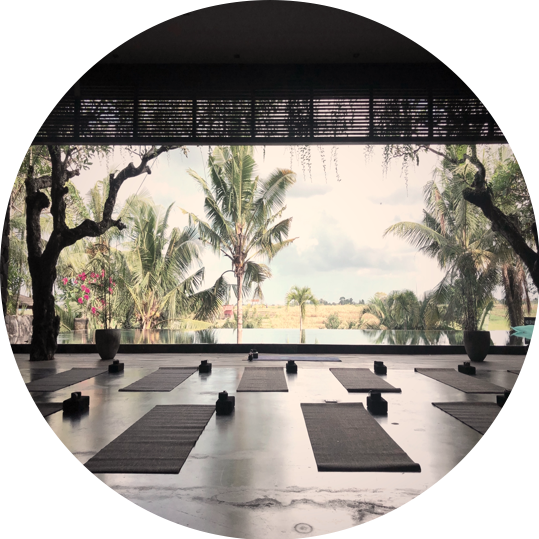 Private session - Focused on the mindful practice that follows the yoga tradition, you will leave the class spiritually and emotionally uplifted.The private session can be one-on-one or in a group.