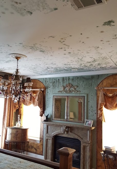 home interior with mold damage