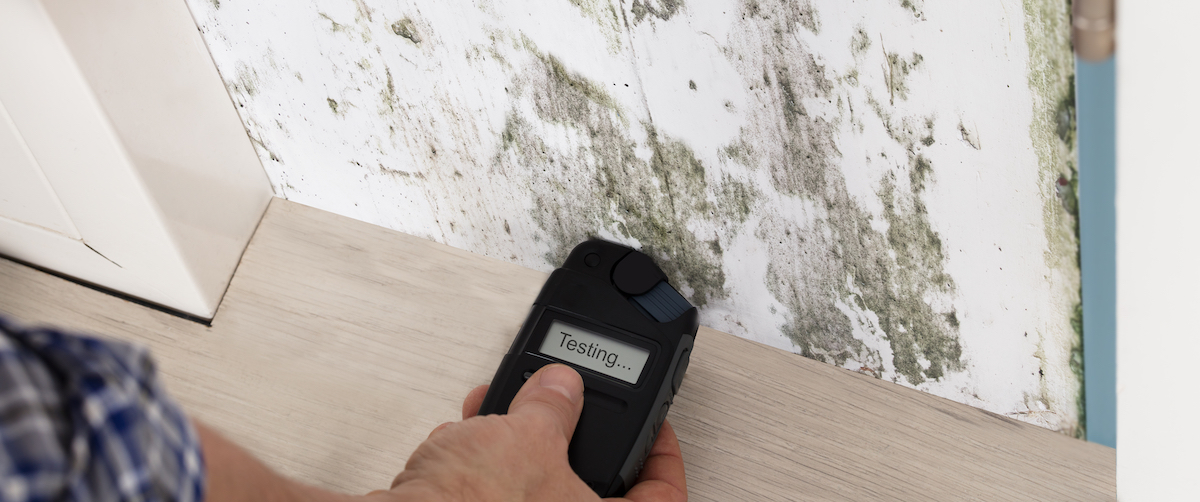 testing mold damage with restoration device