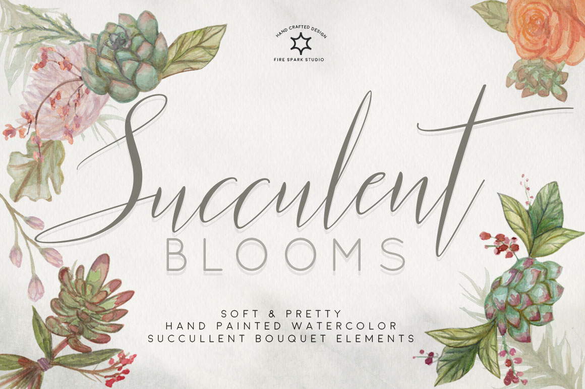 Succulent Blooms Watercolor Illustrations - $15+