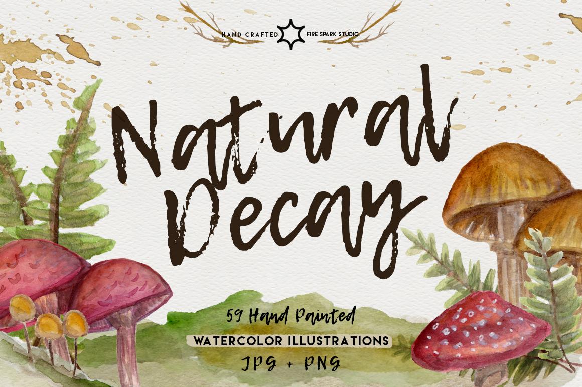 Natural Decay Watercolor Illustrations - $15+