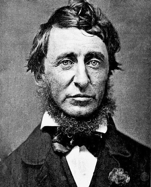 Henry David Thoreau with a mean neckbeard