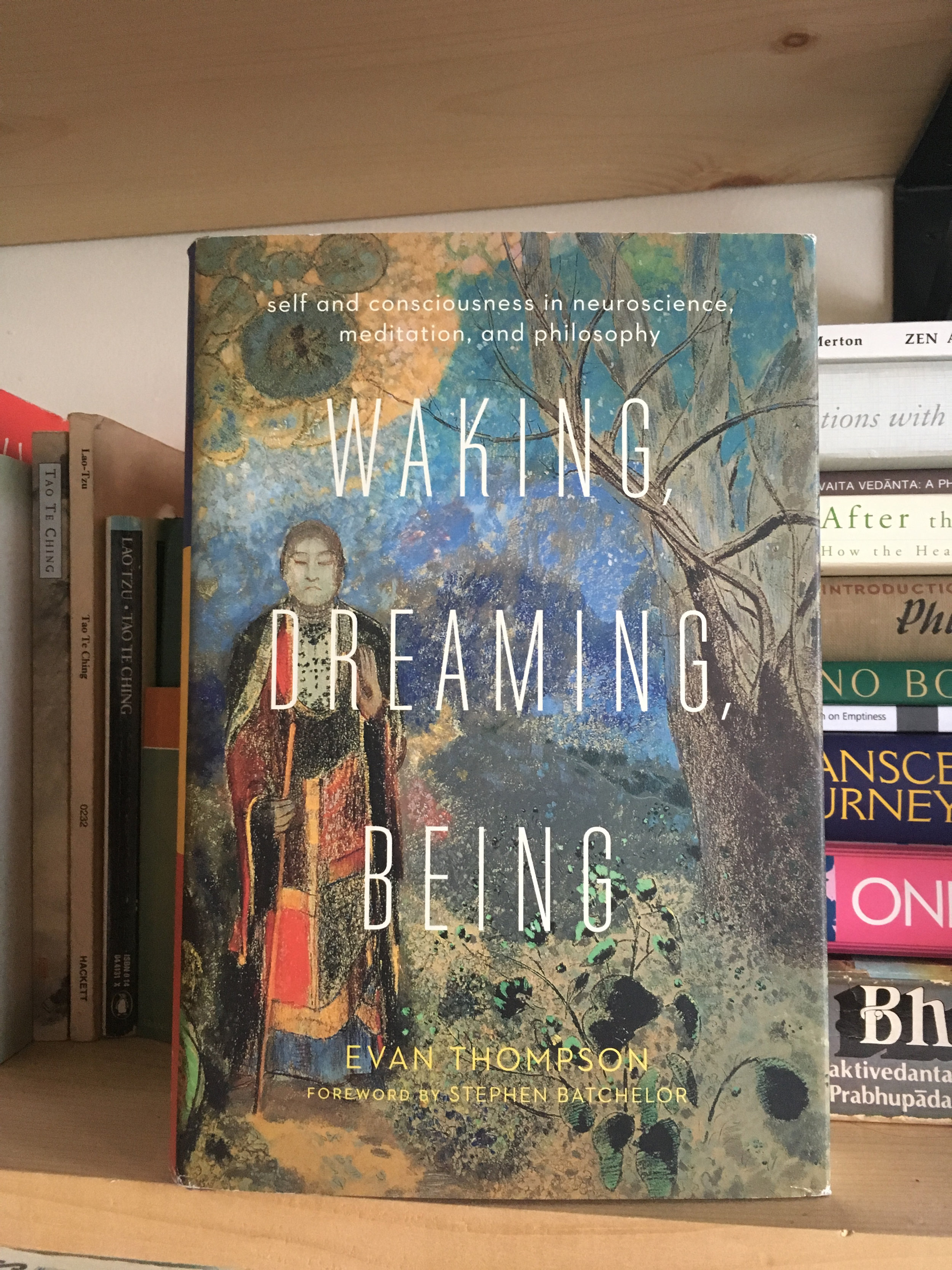 Waking, Dreaming, Being - Evan Thompson