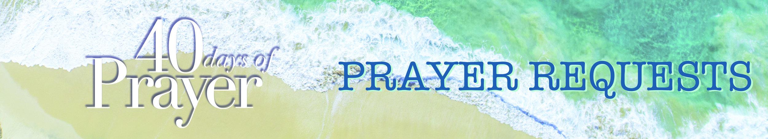40DOP Long Image Prayer Requests.jpg