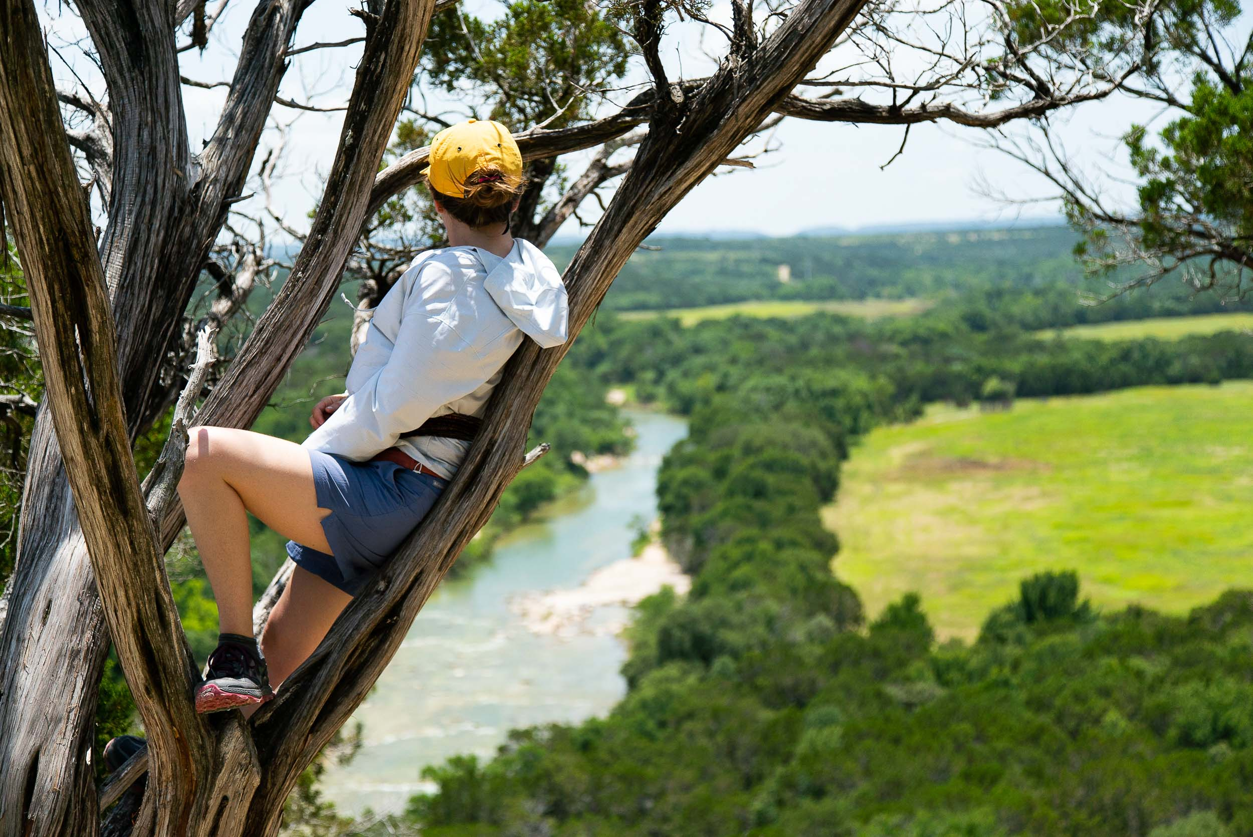 Taking in the view of the Paluxy River from a tree near the Overlook Trail at Dinosaur Valley State Park in Glen Rose, Texas by  Cameron Mosier .
