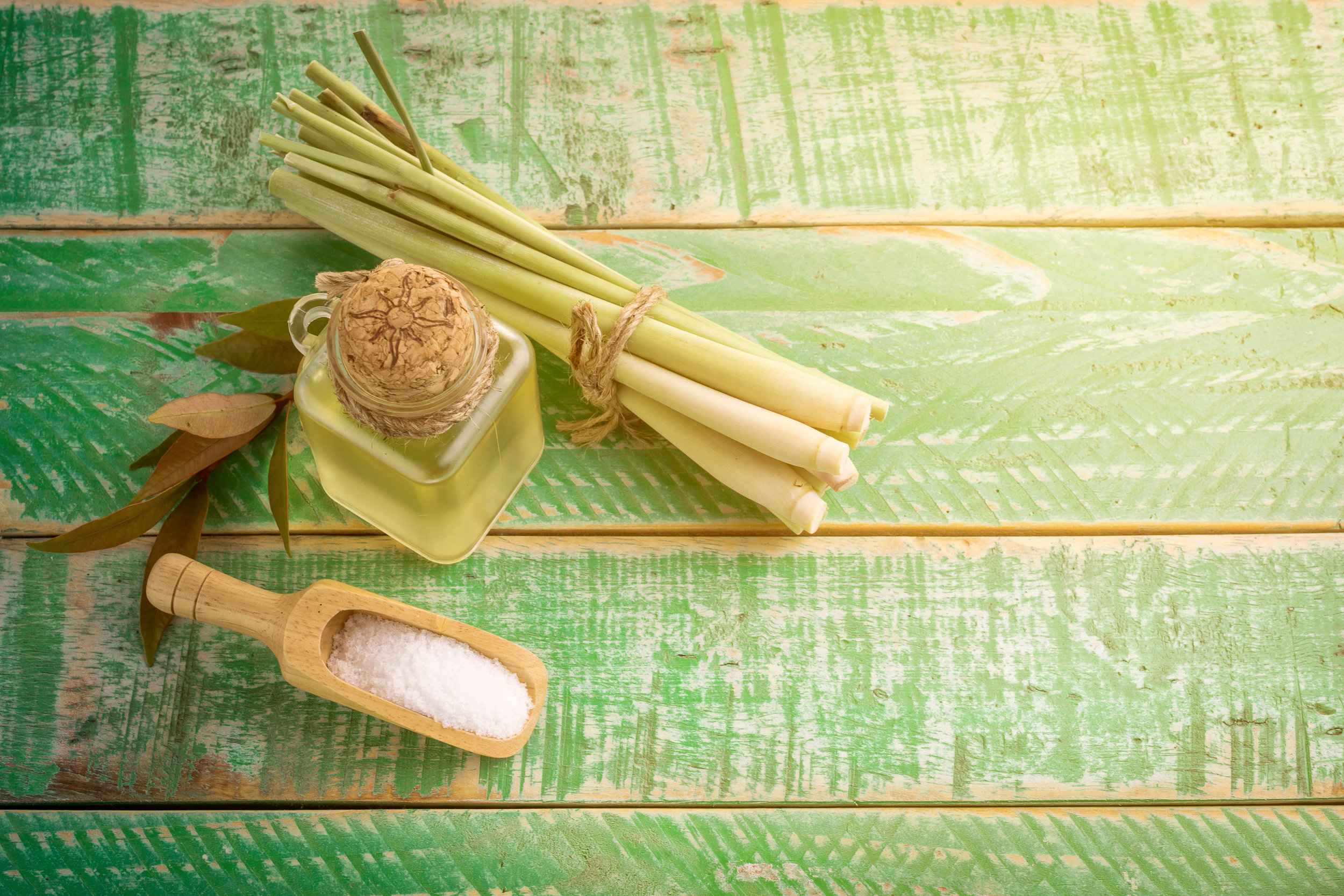 Lemon Grass Oil - Lemongrass acts like a toner, minimizing pores of the skin and toning the tissues and muscles. One huge Lemongrass Essential Oil benefit is its skin healing properties. Lemongrass Oil is an effective cleanser for all skin types; its antiseptic and astringent properties make Lemongrass Oil perfect for getting even and glowing skin.