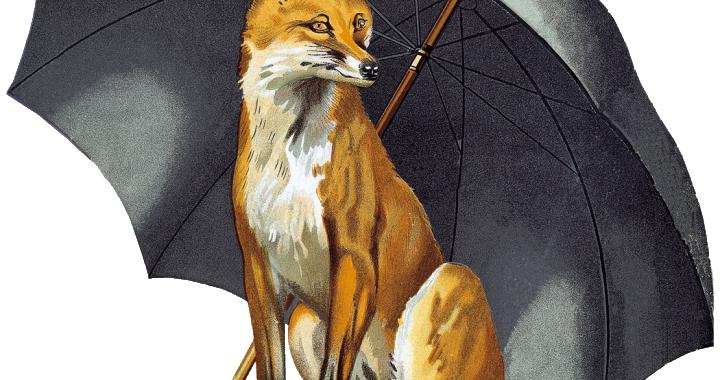 FOX-LOGO-PROMO-MATERIALS-720x380.png