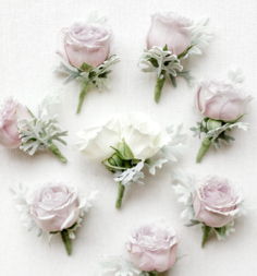 flowers2.png