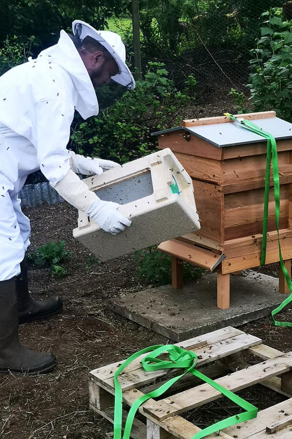 Hugh shaking out the last of the bees