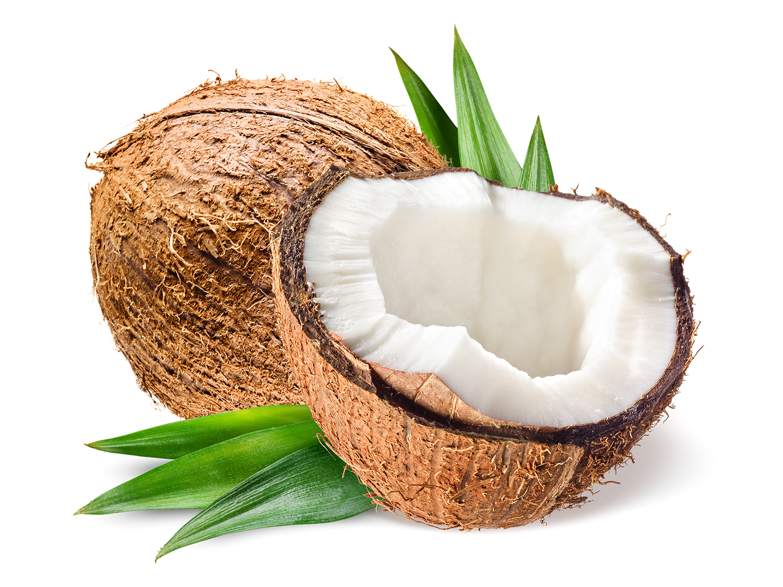 Fat_Coconut_1500.jpg