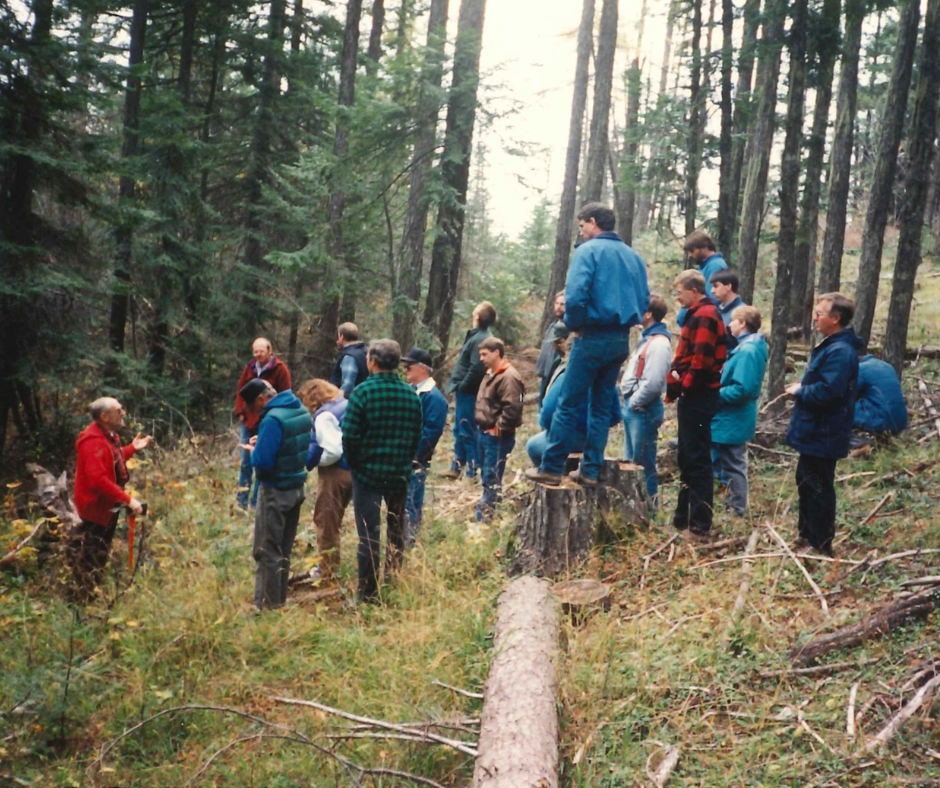 Teaching citizens to challenge illegal logging.