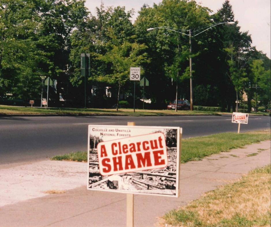 Clear Cut Shame