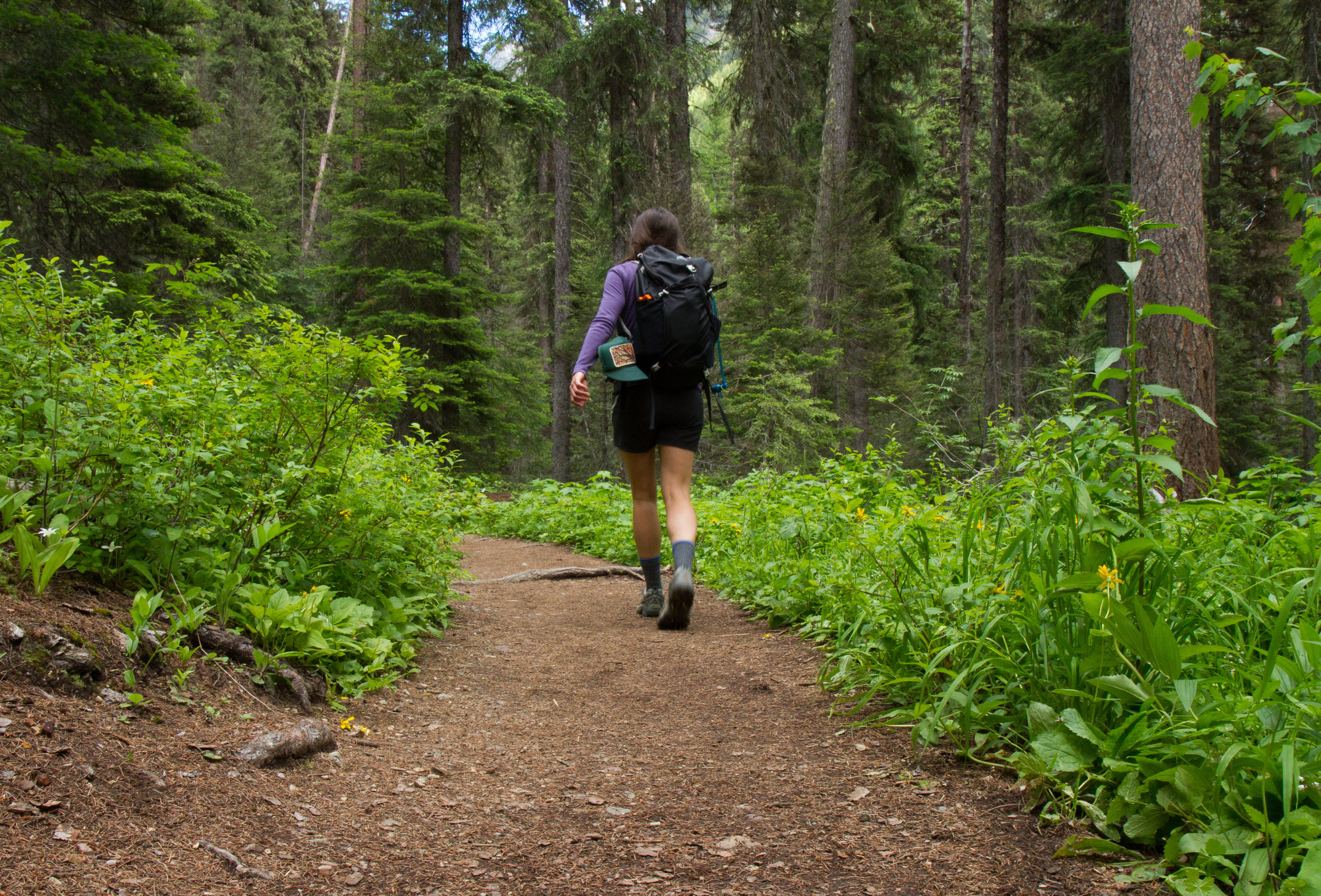 We work to create new recreational opportunities in our region, including a plan in the Colville National Forest that will benefit hikers, bikers, horseback riders, and skiers.