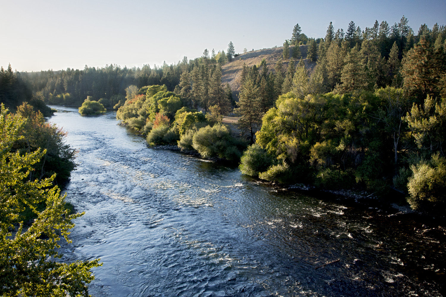 We protect Spokane's water - from the mountain to the tap. -