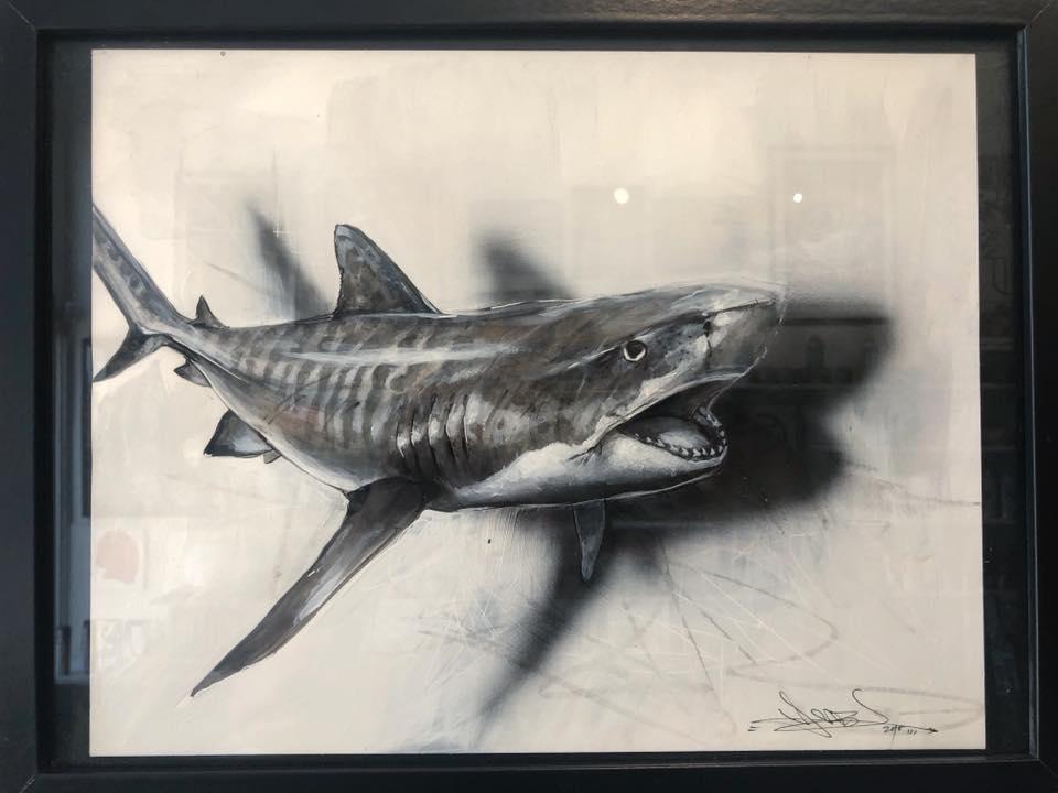 """""""TIGER SHARK"""""""