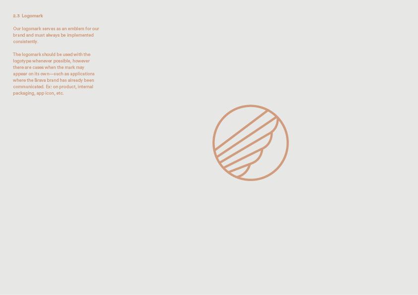 Brava_Graphic_Standards4.jpg