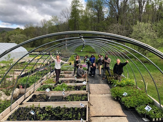 Helia Native Plant Nursery