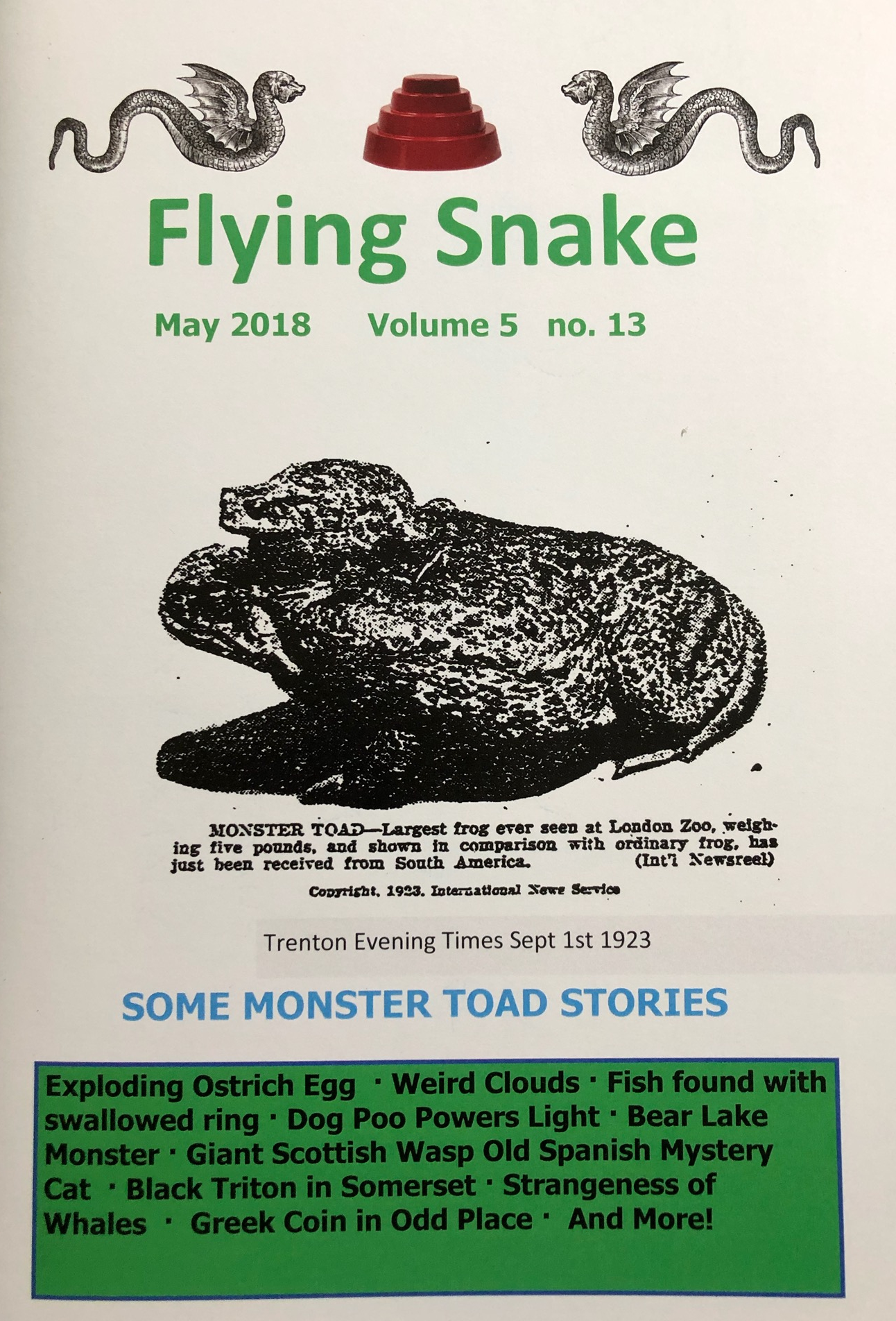 Flying Snake Vol. 5 #13