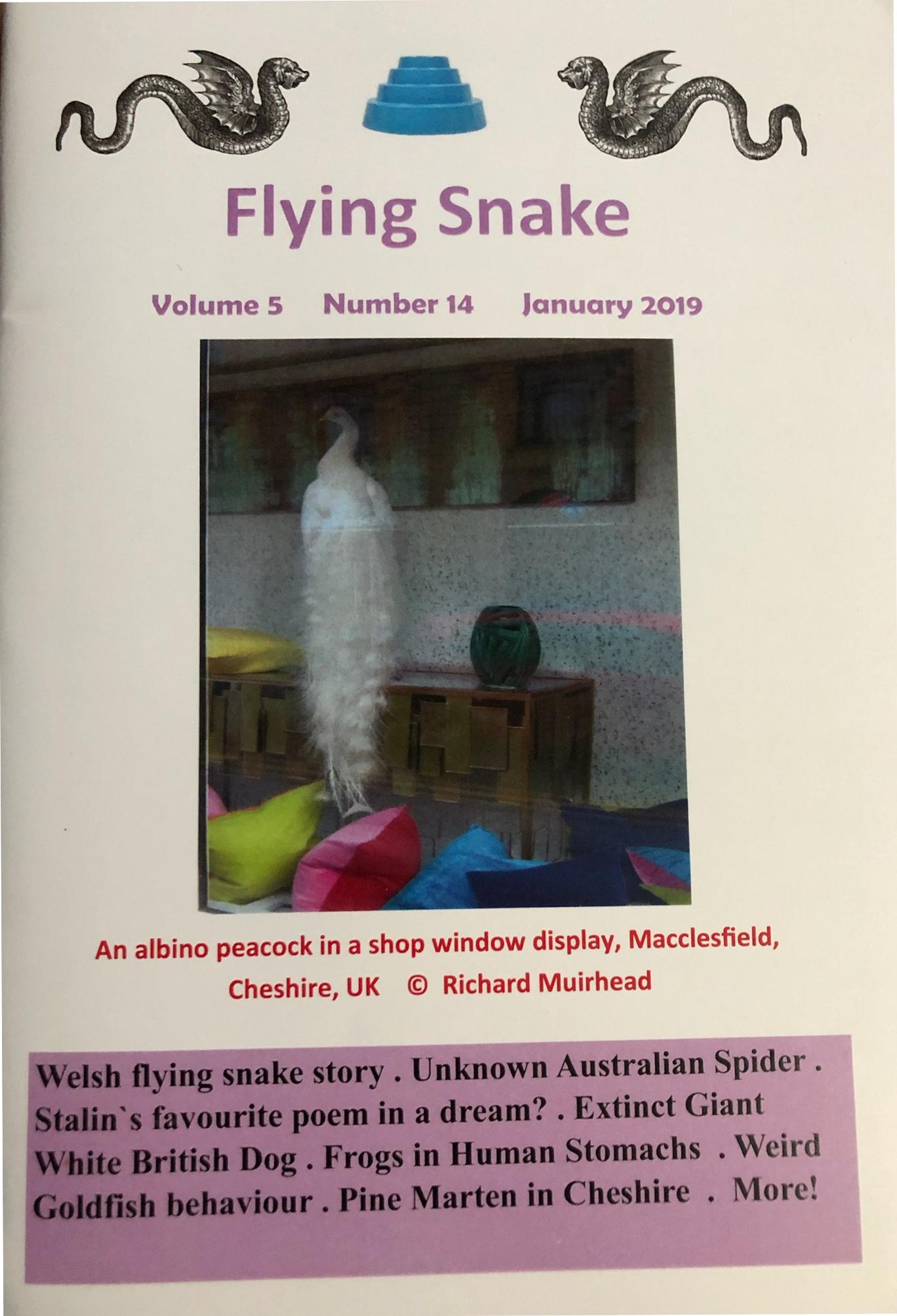 Flying Snake Vol. 5 #14