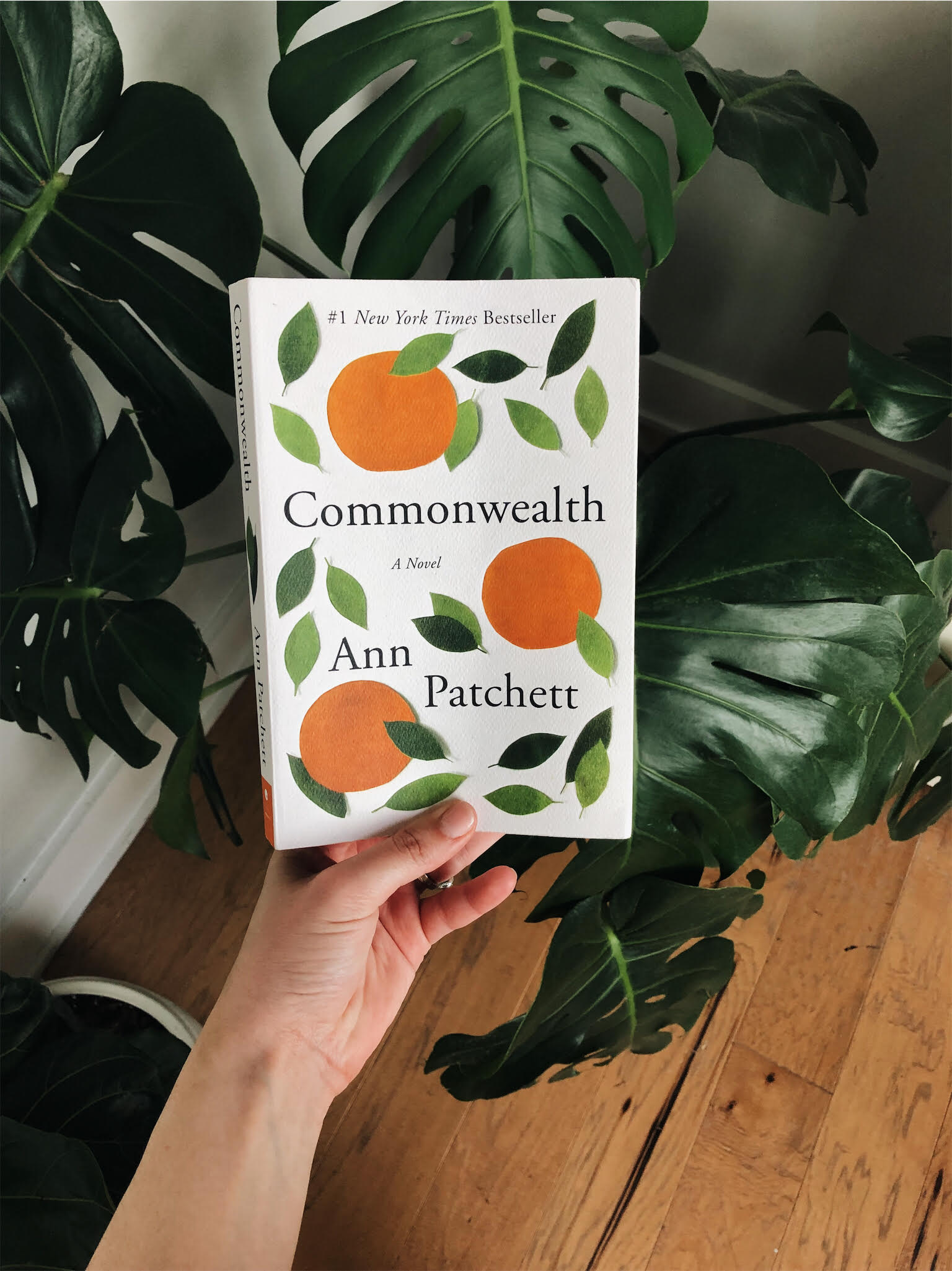 The Commonwealth by Ann Patchett -