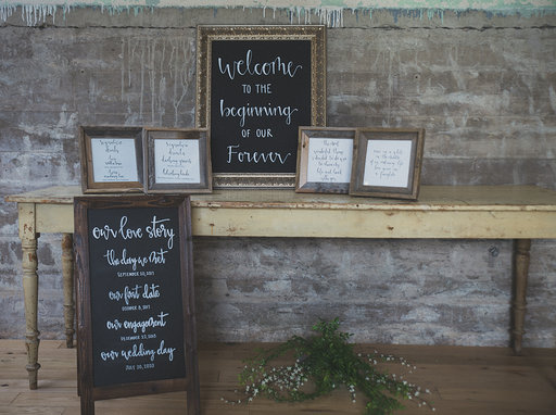 The Janie - What's included:- 1 Welcome Sign- 1 Easel (Love Story)- 2 Quotes (Any Quotes of your choice)- 2 Bar Signs