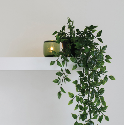 mullaloo-plant-shelf.jpg