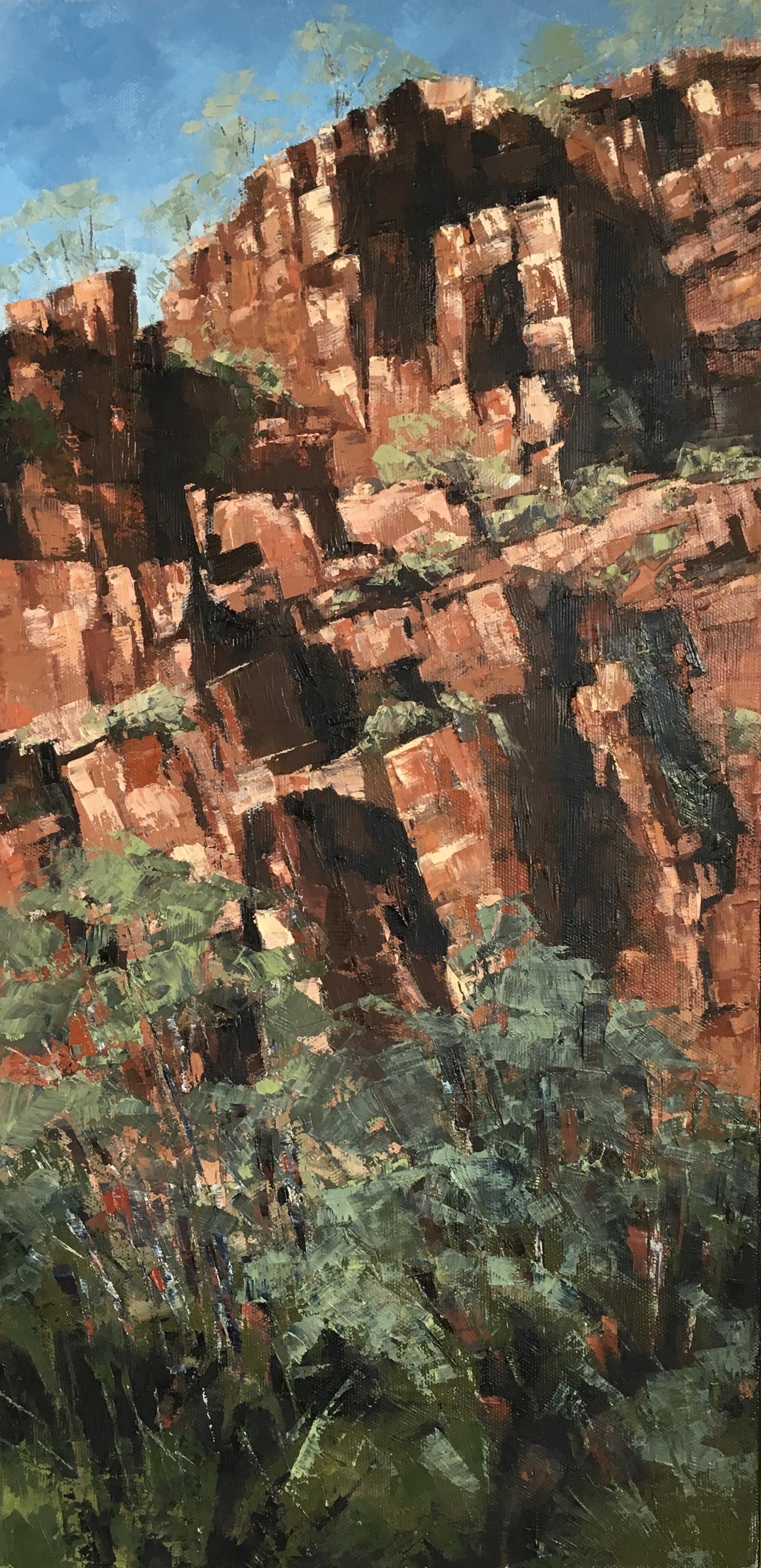 Rock Face (Ord River, Kimberley), Oil, 25 x 51cm,  $500