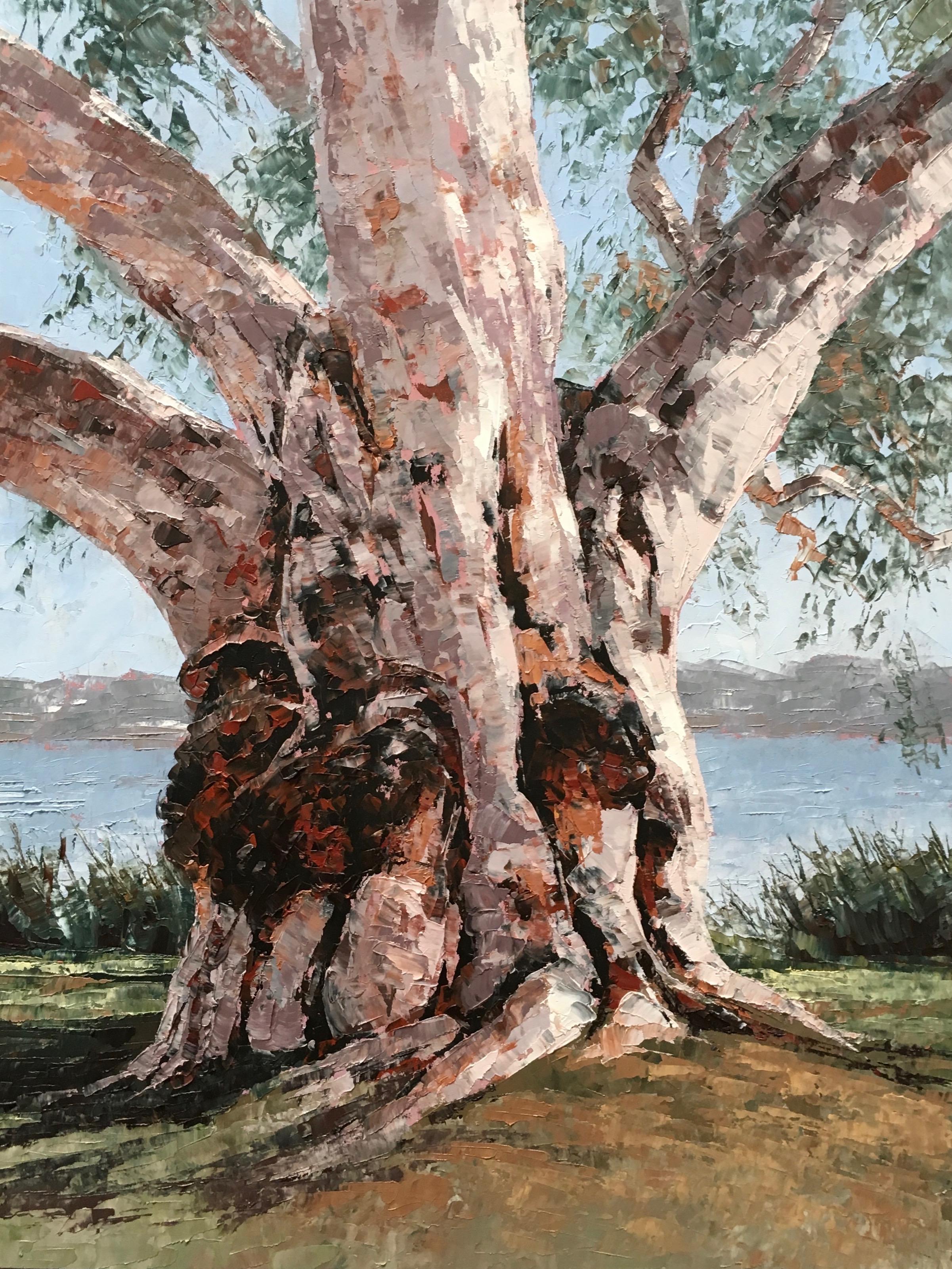 Old Timer, Oil, 31 x 41cm,  $400