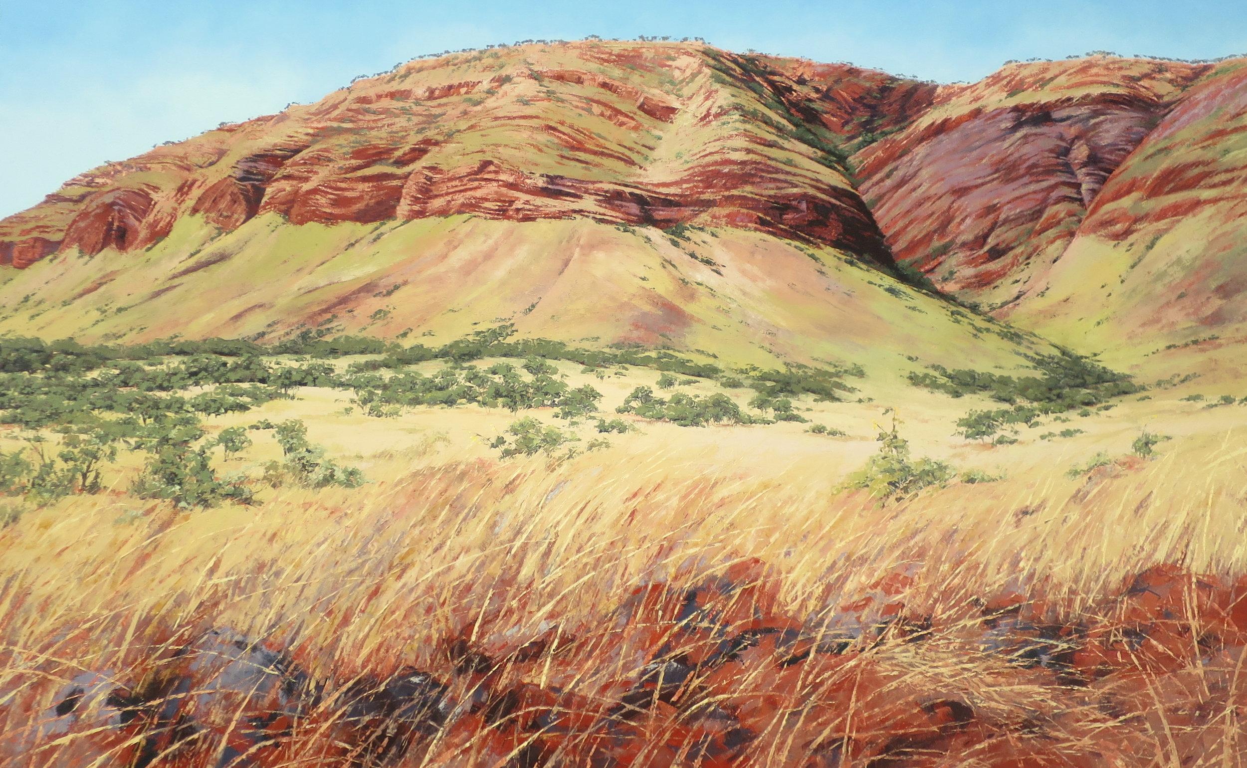 King Leopold Ranges, Oil, 200 x 120cm,  $10,500