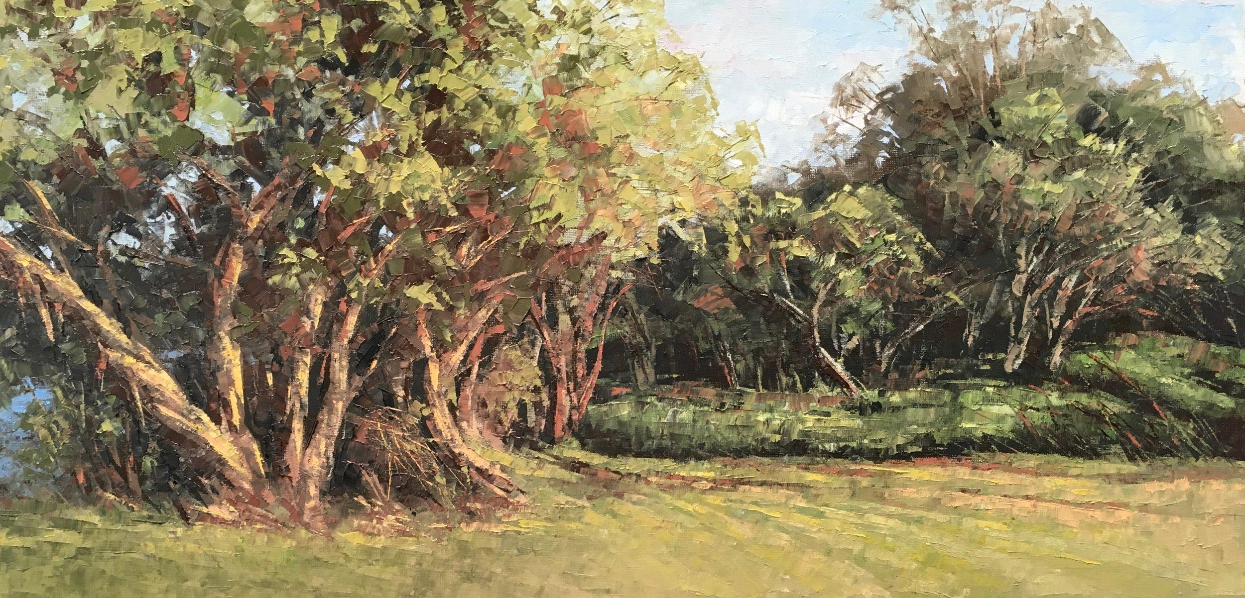 River Walk, Oil, Framed, 72 x 41cm,  $1,200