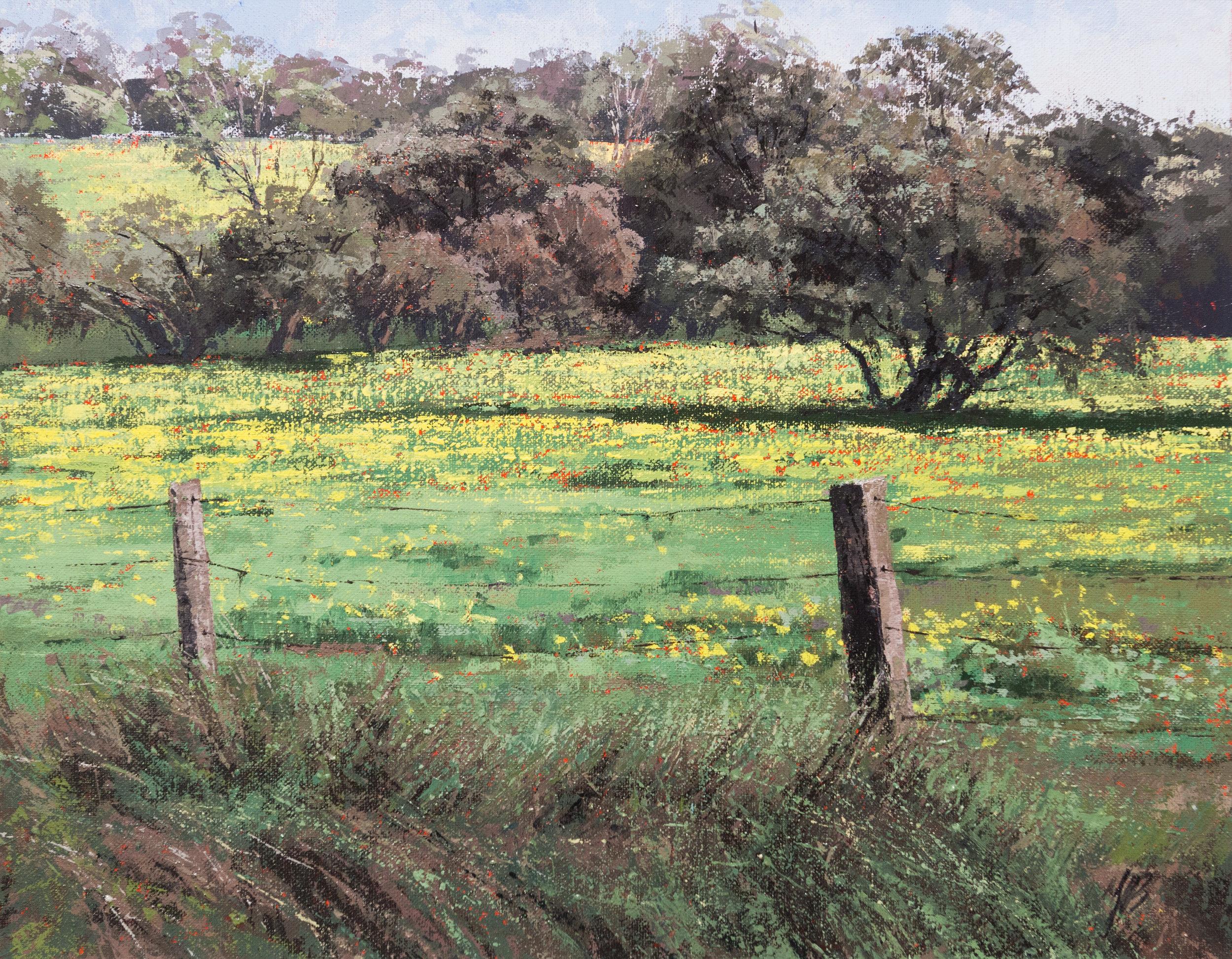 Margaret River, Oil, 61 x 51cm,  SOLD