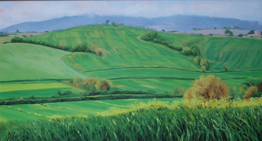 Tuscany in May I, Oil,  SOLD
