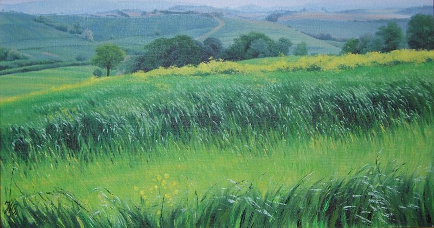 Tuscany in May II, Oil, Framed, 65 x 36cm,  $1,200