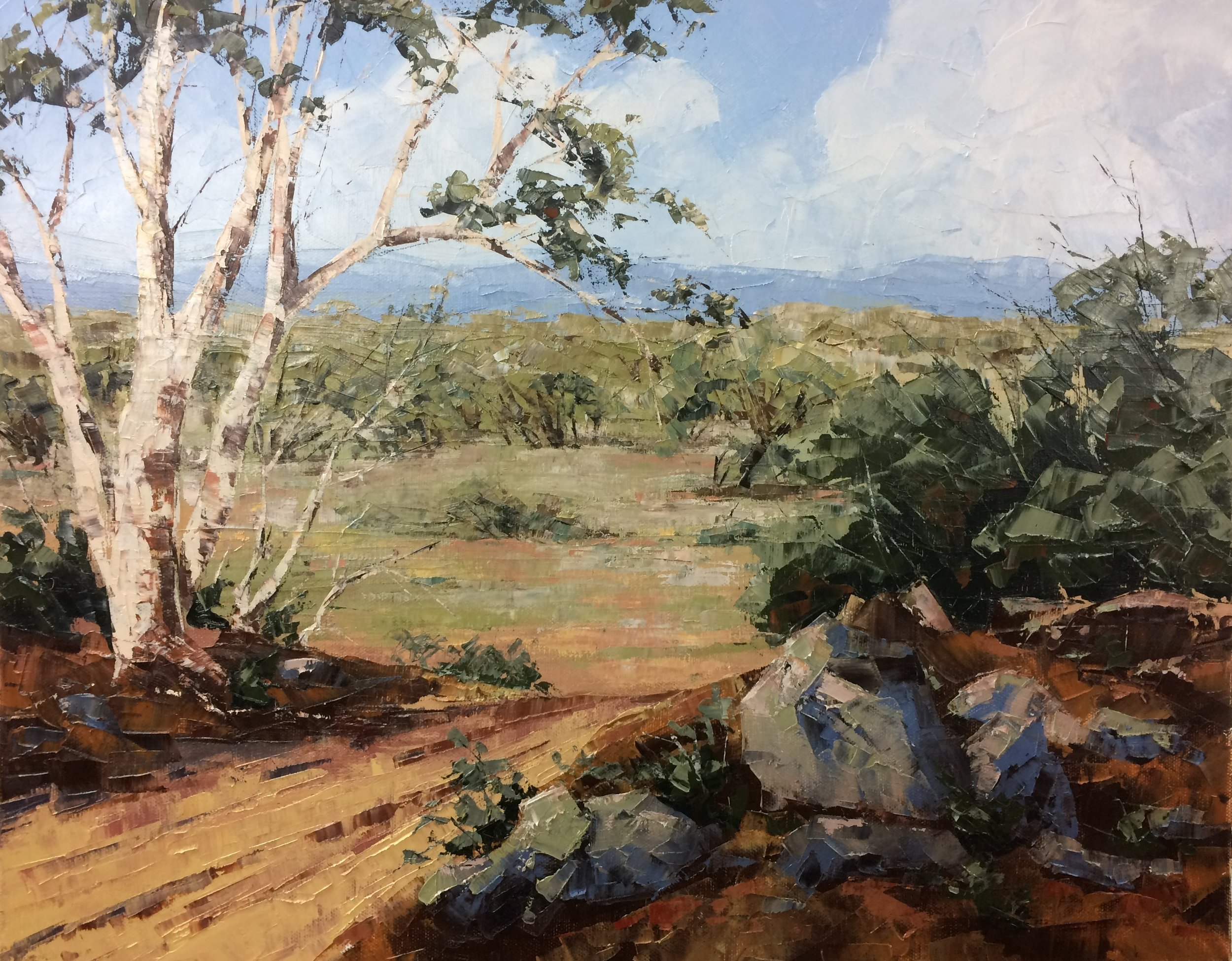 Outback, Oil, 51 x 41cm,  SOLD