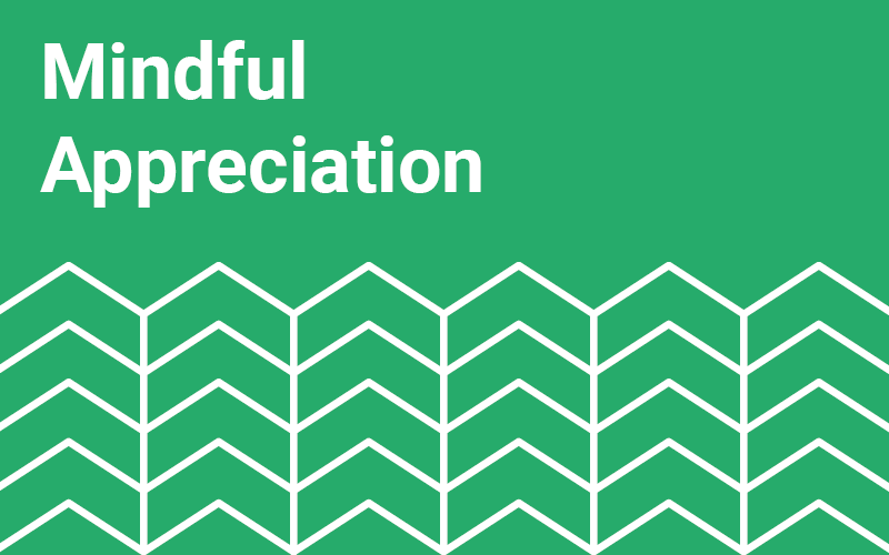 Mindful Appreciation Exercise
