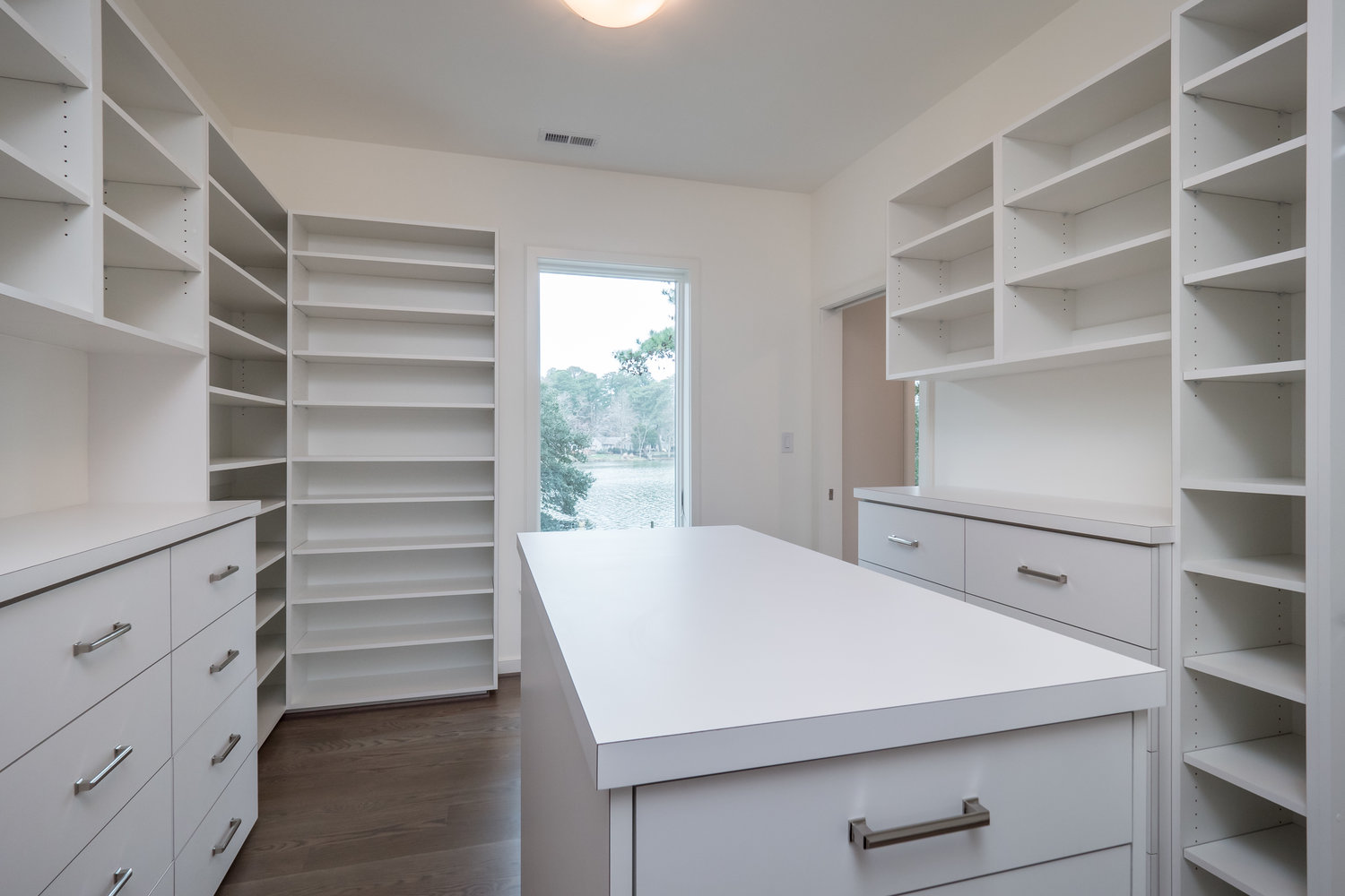 Closet Remodel with a view.jpg